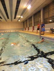 Piscine entrainement loisir natation 2017 (8)